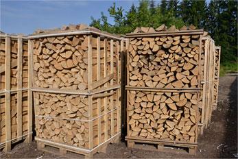 Trockenes buchenholz kaufen